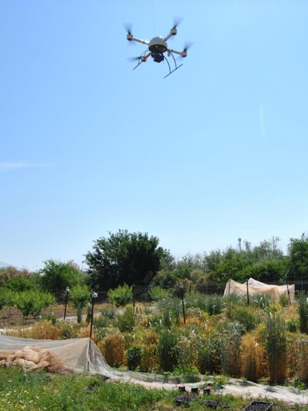 Los drones revolucionarán la restauración ecológica de las explotaciones mineras a cielo abierto