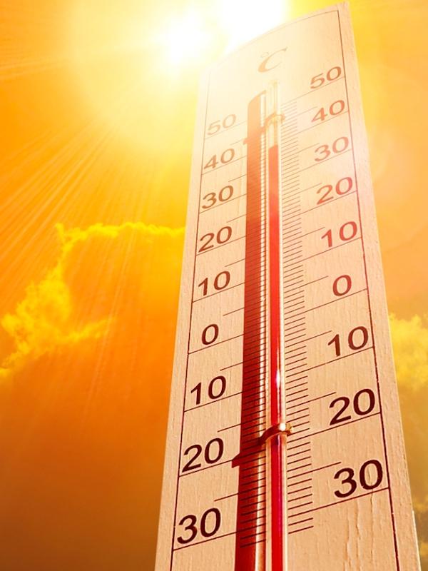 Siberia bajo una terrible ola de calor por la crisis climática