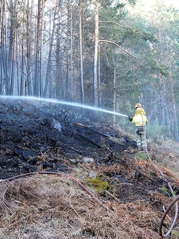 Más de 18.000 hectáreas han ardido en 2020