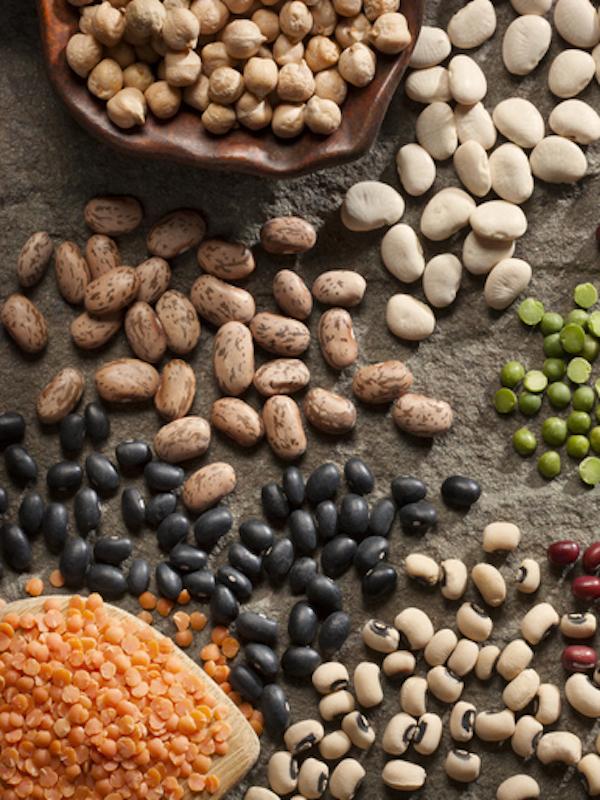 Proteínas vegetales para vivir más y mejor
