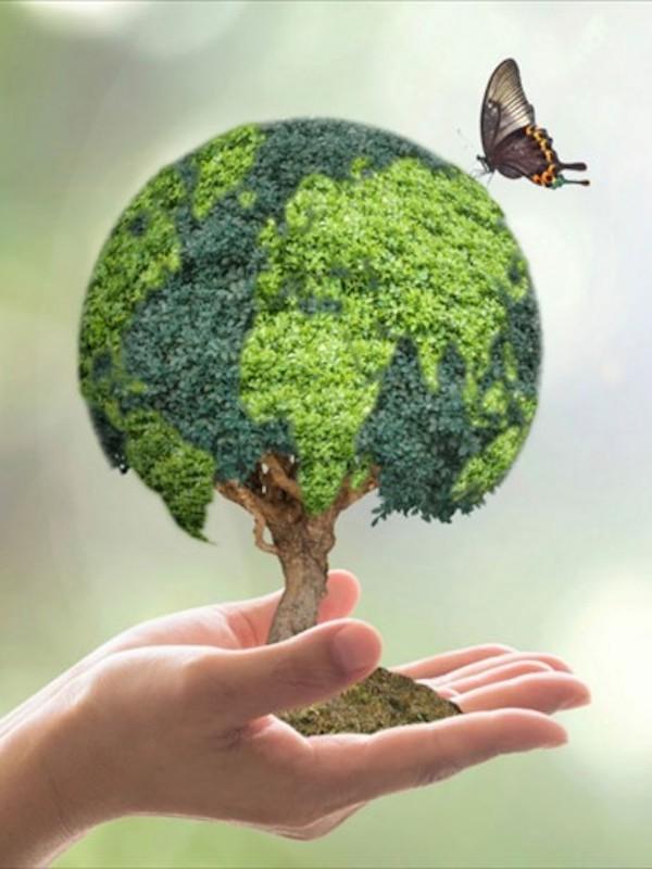 Escuela de Comunicación Ambiental sobre biodiversidad y patrimonio natural en los Cursos de Verano de la UPV/EHU