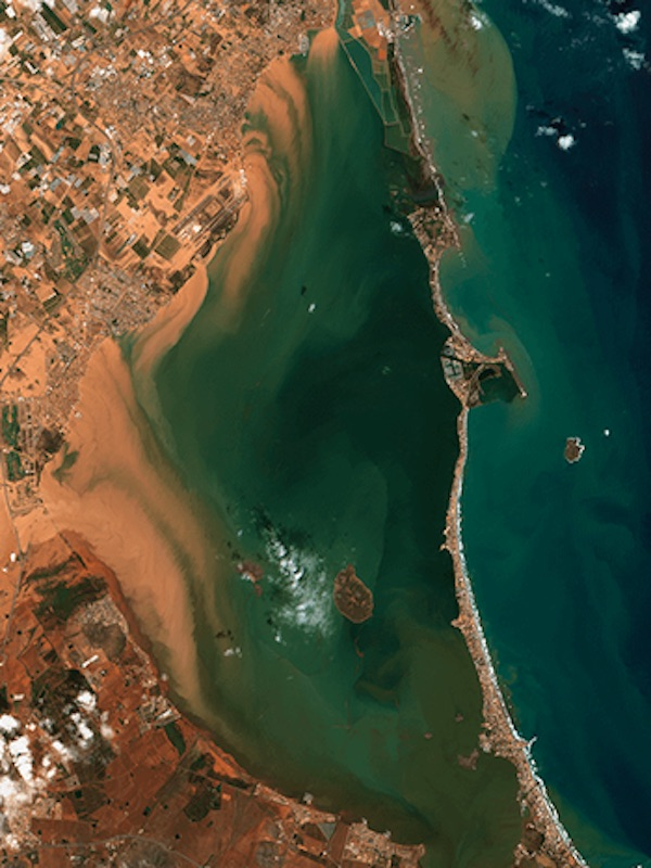 Son necesarios 5 kilómetros de 'cordón vegetal' en torno a la laguna salada del Mar Menor