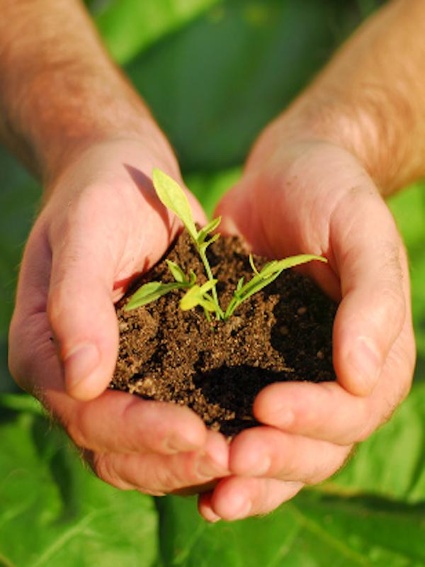 Fundación Biodiversidad. Lanzamos nueva web para la plataforma AdapteCCa