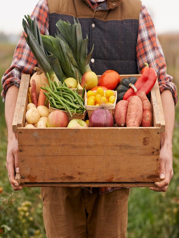 Nuevas evidencias sobre la calidad de los alimentos ecológicos y Carnes Campos