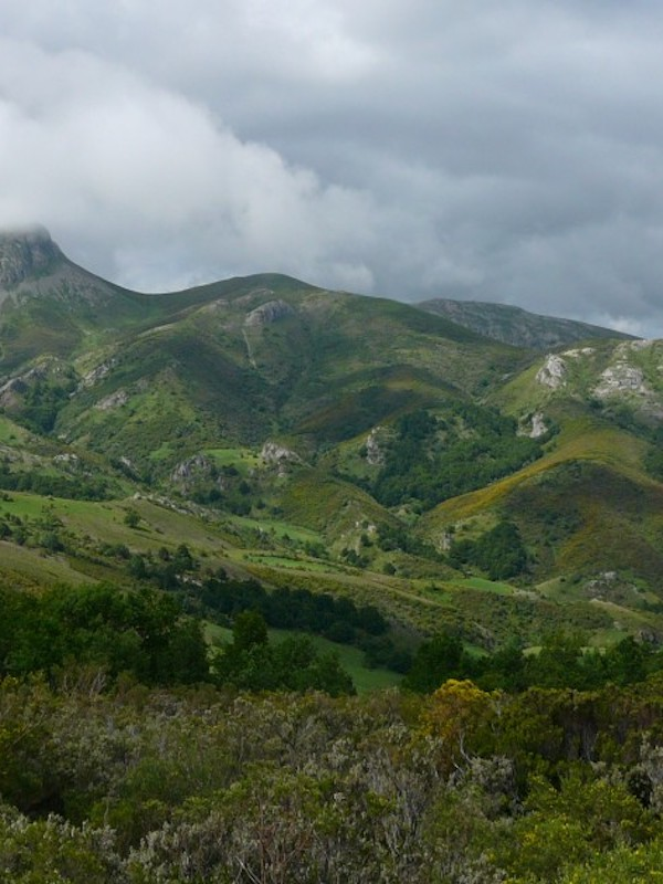 Andalucía declara 13 nuevas zonas especiales de conservación dentro de la Red Natura 2000