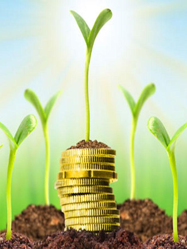 Economía verde para prosperar