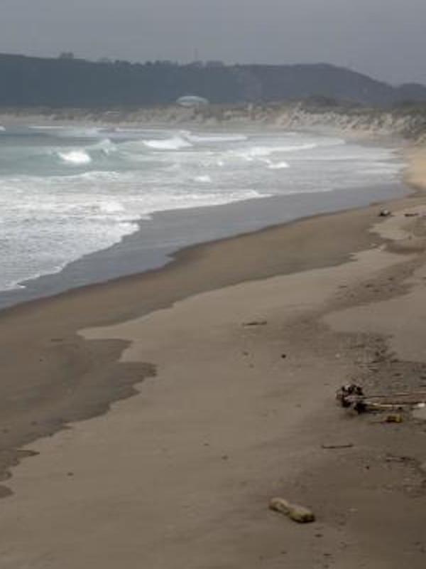 La 'gran chapuza' de las desinfecciones de playas