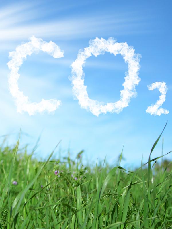 Naturgy reducirá sus emisiones de CO2