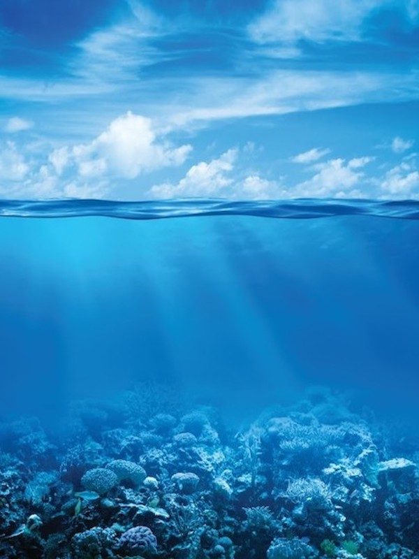 Día Mundial de los Océanos, la 'alcantarilla' del siglo XXI
