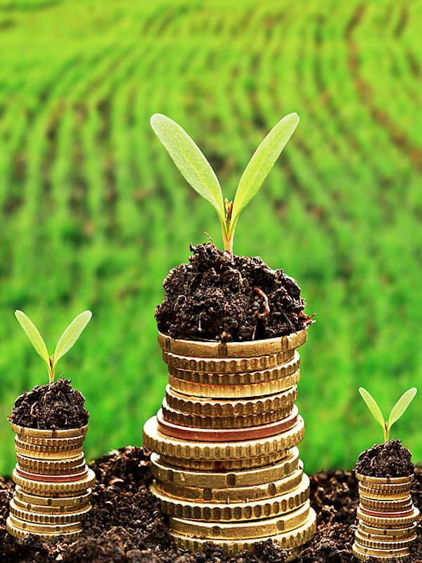 El euro es la moneda favorita del mundo para emitir bonos verdes