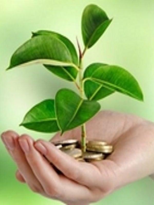 Inversores internacionales presionarán para que seis empresas españolas informen de su impacto ambiental
