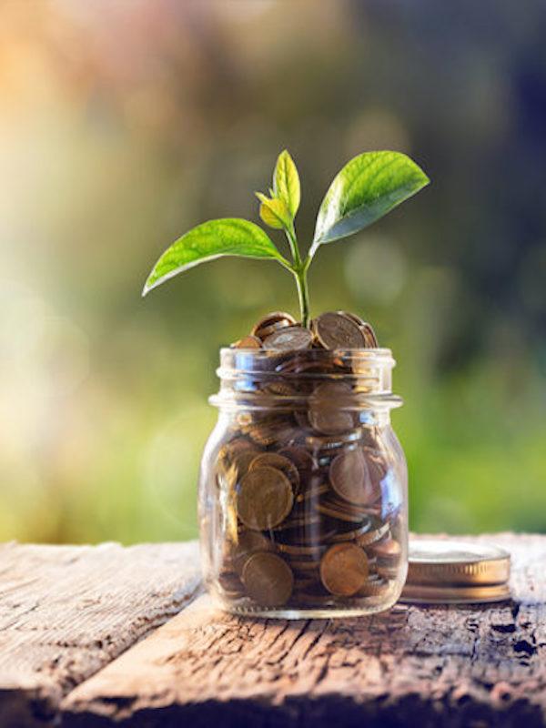 Audax Renovables aprueba un marco normativo para financiar proyectos mediante bonos verdes
