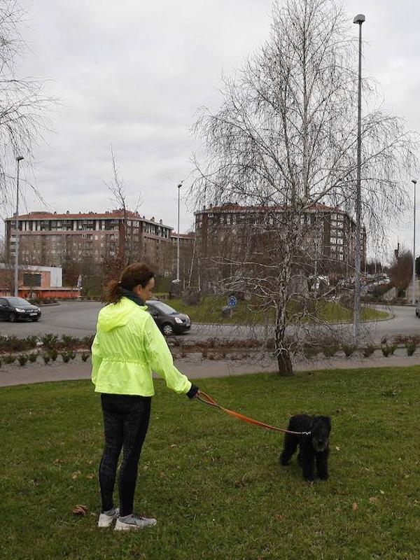 Primer parque canino de Torrelavega