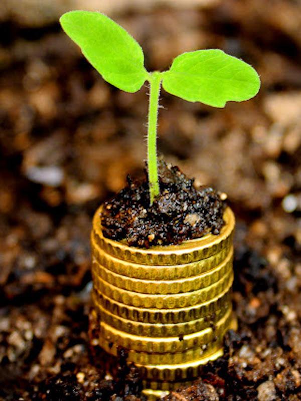 Los activos ligados a la sostenibilidad muestran mayor resistencia en crisis