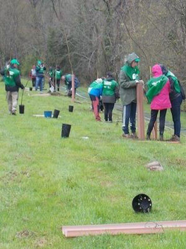 Cantabria. CIMA retoma sus actividades de voluntariado ambiental