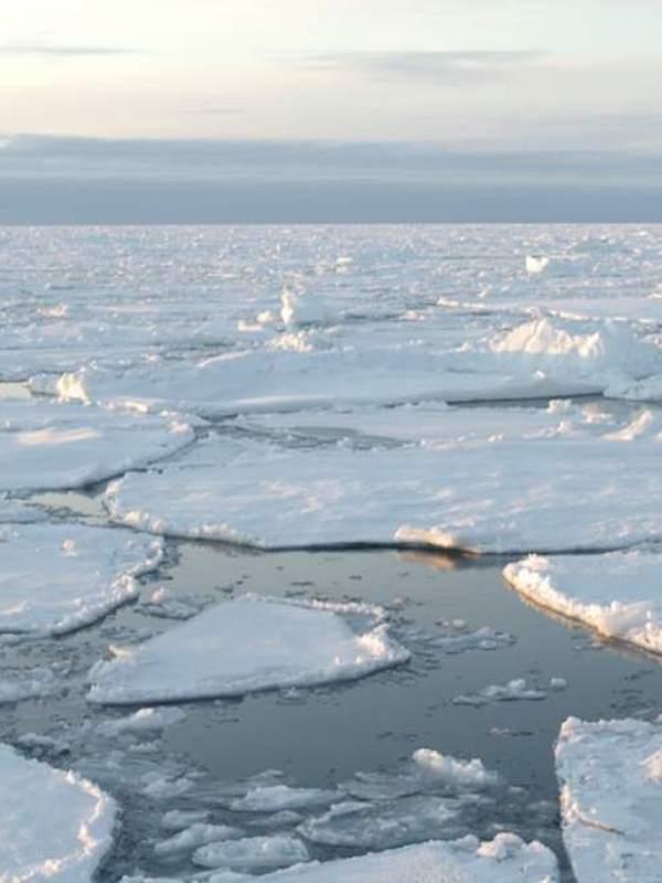 Un área de hielo dos veces España desaparece en el Mar de Wedell
