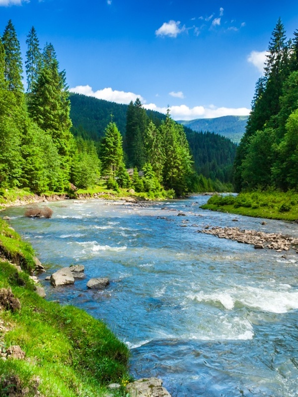 La actividad del ser humano en los ríos es 'peor' que los efectos del cambio climático