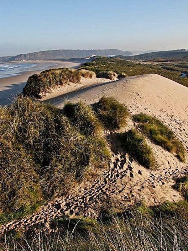 Asturias. Queda paralizada de momento mas construcciones en las dunas del Espartal en Castrillón