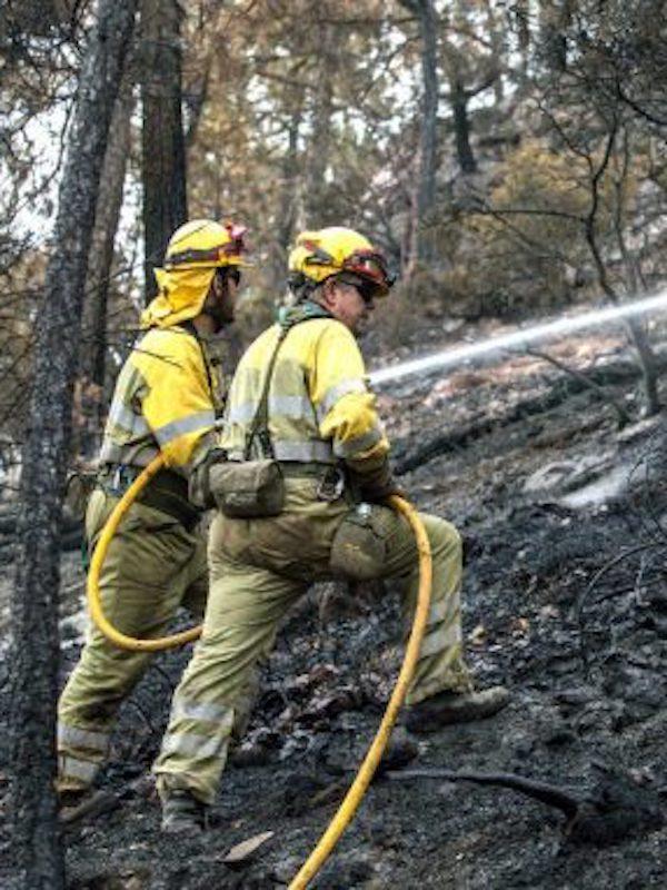 Cinco detenidos por incendios forestales en Córdoba