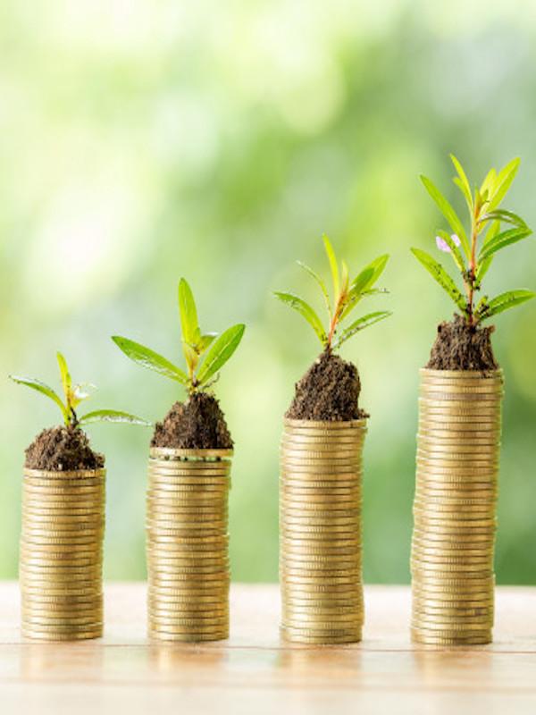 Una 'fintech' fundada por una española ayuda a los fondos a invertir bajo criterios sostenibles