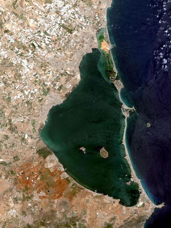 Recuperar el Mar Menor, no es cuestión de 'palabrería', sino de hechos constatados y contrastables
