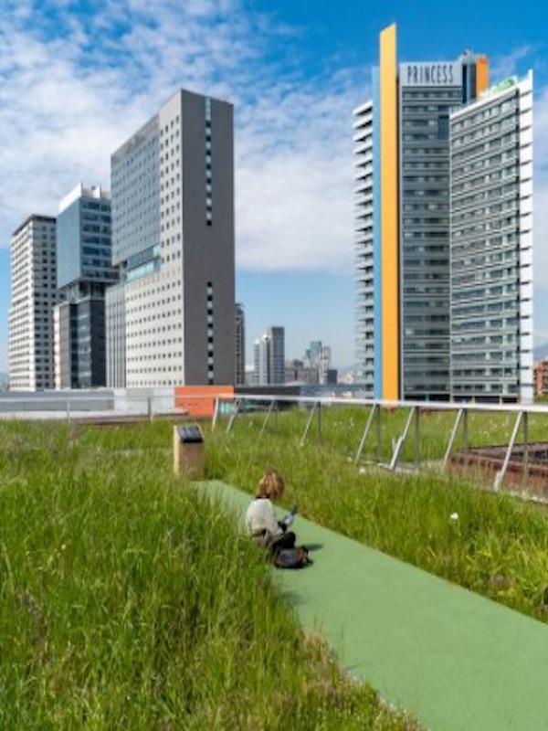 Barcelona 'saca pecho' con su primera cubierta verde silvestre de casi 8.000 m2