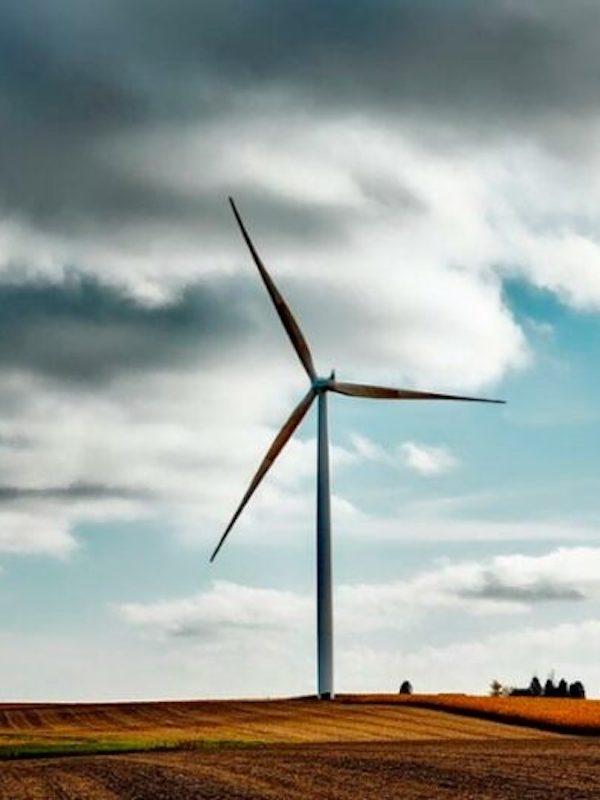 El consejero delegado de Repsol, Josu Jon Imaz, visita el proyecto eólico Delta en Aragón