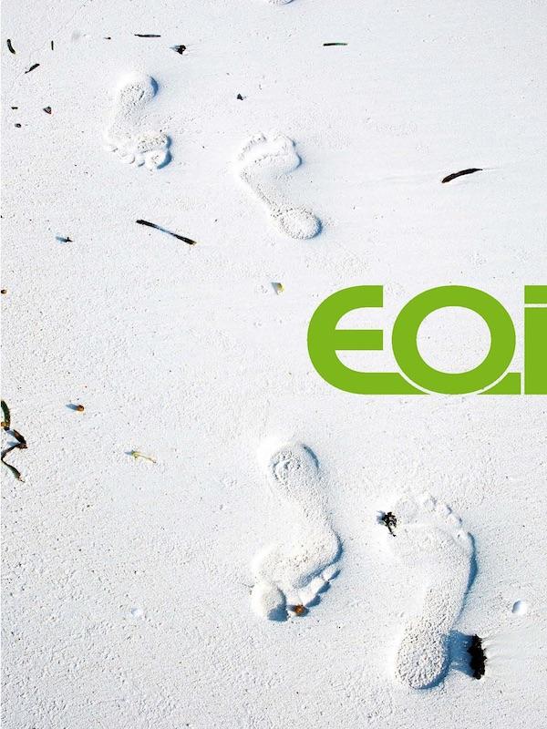 EOI: los negocios y la formación ambiental