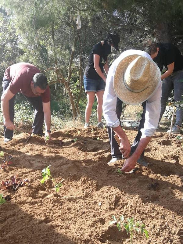 Navarra, huerto ecológico. El Comando Borraja asalta el barrio de La Panueva de Tafalla