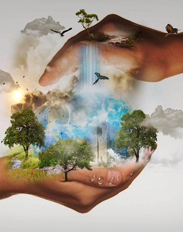 La biodiversidad sobre el Planeta en serio peligro de desaparecer