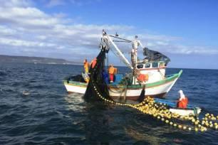 STOP a los subsidios que mantienen la sobrepesca
