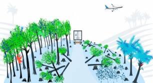 Los biocombustibles de palma y soja agravarán la deforestación mundial y la pérdida de biodiversidad