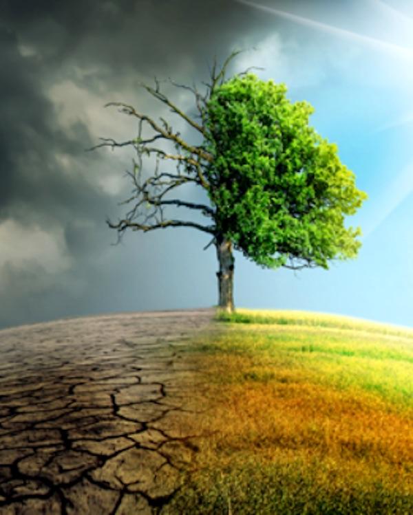 Los 'tentáculos' del Poder bloquean las políticas urbanas de adaptación al cambio climático