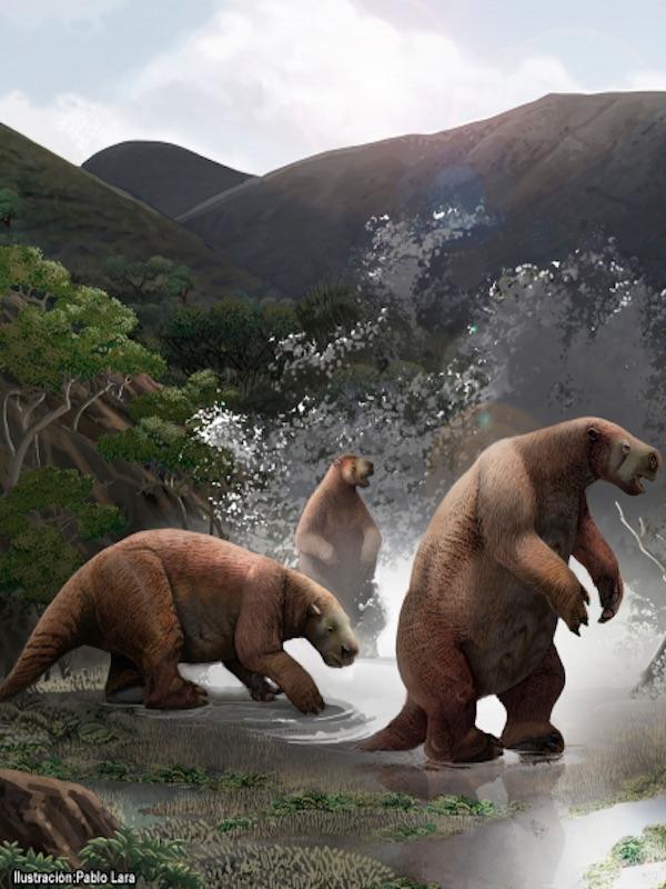 Paleontólogos de Argentina y Ecuador presentaron un