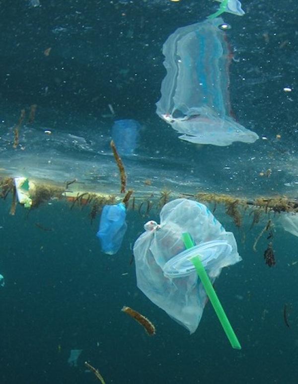 Tecnología verde para convertir los residuos plásticos oceánicos en elementos ecoinnovadores