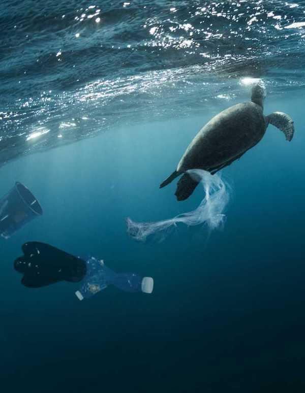 Tres millones de personas quieren que se protejan nuestros océanos