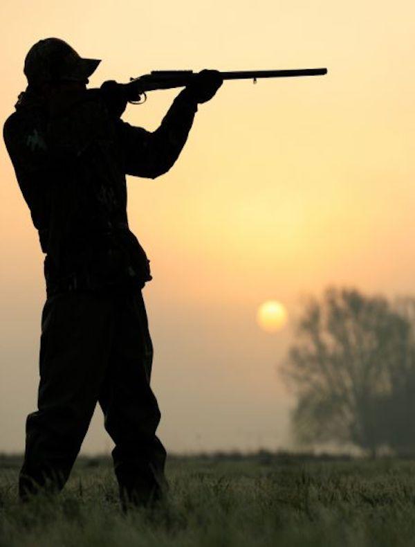 Los cazadores dejarán de 'matar' por el COVID-19