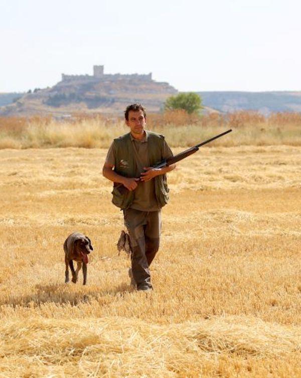 Castilla y León rectifica y retira las autorizaciones excepcionales a la caza