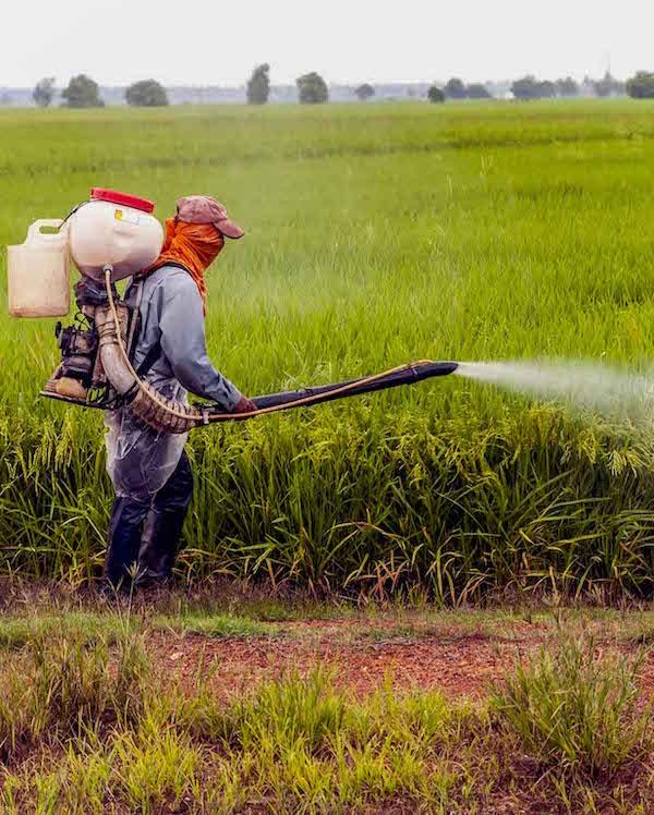 STOP al peligroso pesticida 'mancozeb' en Europa