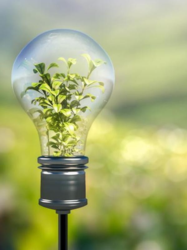 Cádiz, premios EnerAgen las acciones del Ayuntamiento para la transición energética local