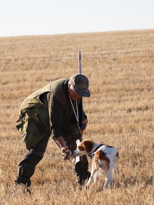 La caza No entiende de solidaridad durante el estado de alarma