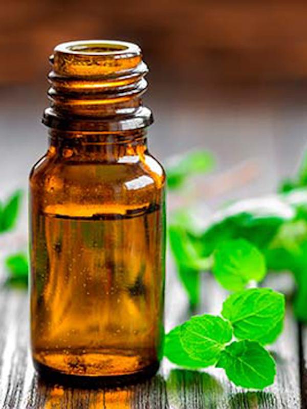 El aceite de esencial de orégano reduce la resistencia de salmonela