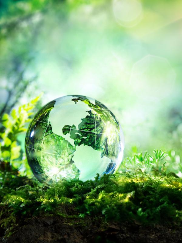 El estado de alarma están mejorando la calidad del aire y las aguas