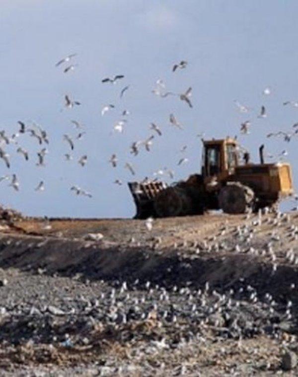 ¿Es posible que incinerar los residuos con COVID-19 en cementeras suponga un riesgo?