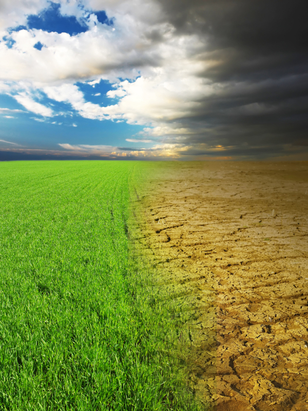 Greenpeace afirma que a pesar del descenso de las emisiones de CO2 no paliará sustancialmente el cambio climático