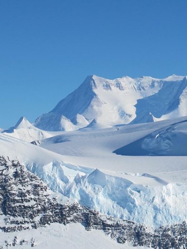 Así eran los bosques de la Antártida donde vivieron los dinosaurios