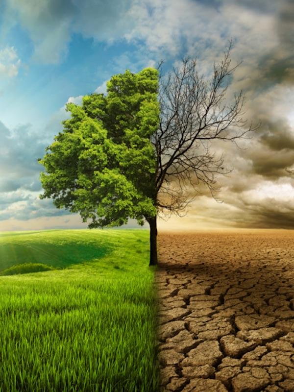 Ihobe publica un visor de escenarios climáticos que posibilita analizar el impacto del calentamiento global en el País Vasco