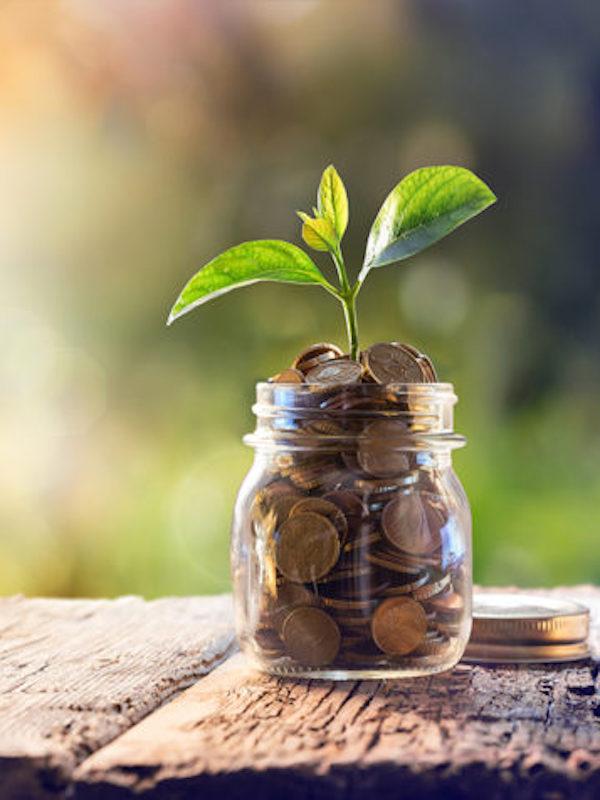 El País Vasco emite el tercer bono sostenible