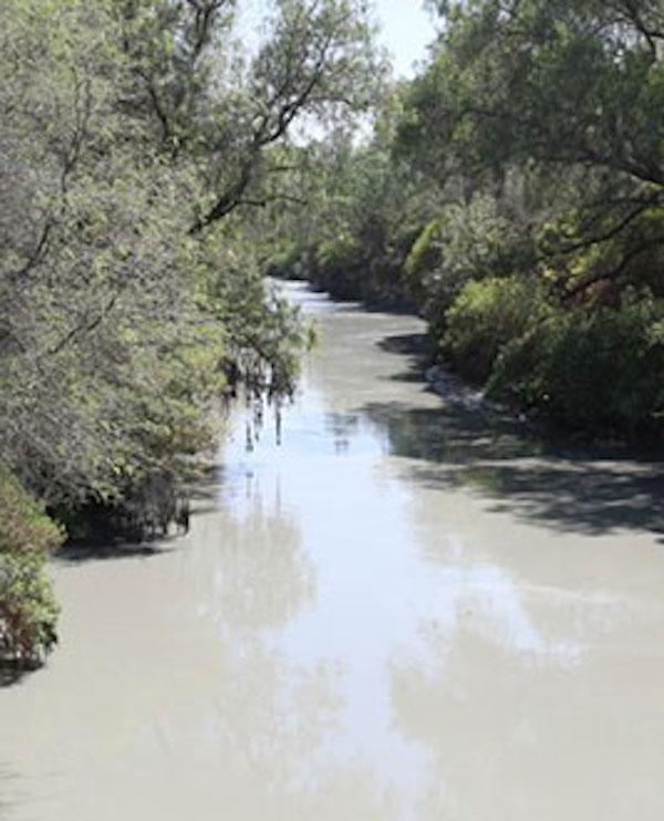 México. Restauración Ecológica para la región de Tula-Atitalaquia-Apaxco