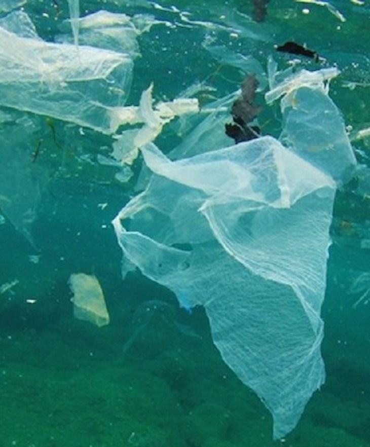 Microplásticos en el fondo marino, un 'problemón' al alza